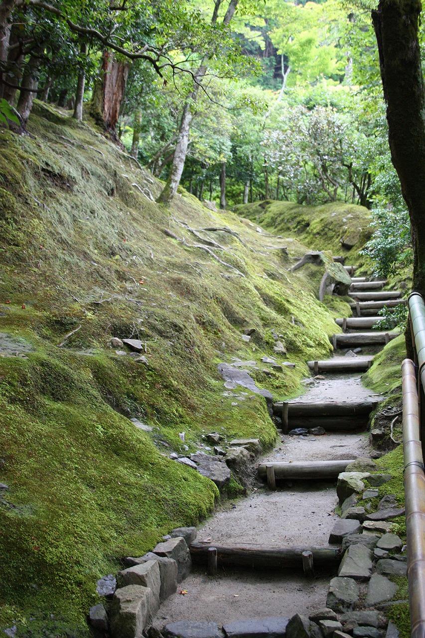 銀閣寺の森